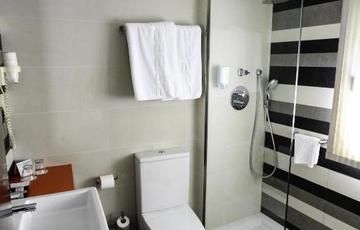 Baño Hotel Nuevo Torreluz