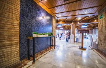 Zonas comunes Hotel Nuevo Torreluz